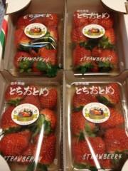 アントニオ小猪木 公式ブログ/イチゴのプレゼント! 画像1