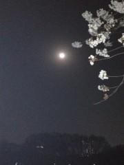 アントニオ小猪木 公式ブログ/月とさくら 画像1