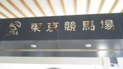 アントニオ小猪木 公式ブログ/東京競馬場へ 画像1