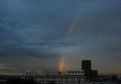 アントニオ小猪木 公式ブログ/台風後の虹 画像1