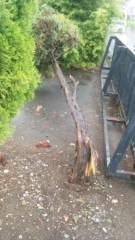 アントニオ小猪木 公式ブログ/台風の影響 画像1