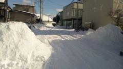 アントニオ小猪木 公式ブログ/キレイな雪道 画像1