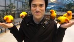 アントニオ小猪木 公式ブログ/掛川花鳥園にて 画像1