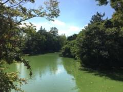 アントニオ小猪木 公式ブログ/武蔵関公園の池 画像1