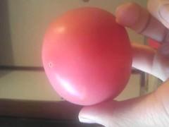 樋口亜弓 公式ブログ/トマト 画像1