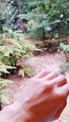川村綾 公式ブログ/メンテナンスday 画像1