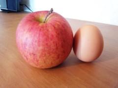 川村綾 公式ブログ/「奇跡のリンゴ」食べた〜 画像1