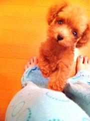 川村綾 公式ブログ/本日の☆太陽☆ 画像1
