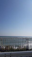 川村綾 公式ブログ/ひたち海浜公園 コキア紅葉 画像1