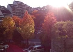 川村綾 公式ブログ/親子でOOの秋 画像1