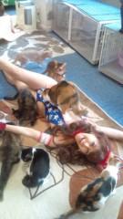 岡本夏生 公式ブログ/猫まみれ史上最大の至福の時 画像1