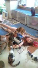 岡本夏生 公式ブログ/猫まみれ史上最大の至福の時 画像3