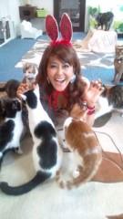 岡本夏生 公式ブログ/猫まみれパート2 オカルト夏生幸せニャンパラリンの巻 画像1