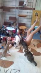 岡本夏生 公式ブログ/猫まみれ史上最大の至福の時 画像2