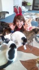 岡本夏生 公式ブログ/猫まみれパート2 オカルト夏生幸せニャンパラリンの巻 画像2