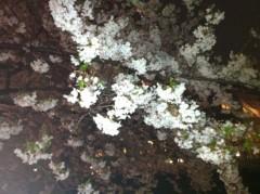 いのこまりこ 公式ブログ/花散らし 画像1