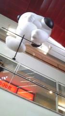 フェアリーズ 公式ブログ/井上理香子「スヌーピーとまぬけなトキ」 画像2