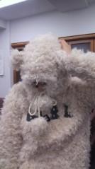 フェアリーズ 公式ブログ/藤田みりあ「くまがね。くまがね。」 画像1