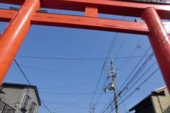 磯部弘 公式ブログ/第2回京都マラソン Part2 画像3
