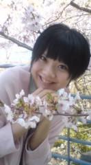 河井夕菜 公式ブログ/湘南平にお花見に行きましたぁ〜( ̄□ ̄;)!!♪♪(^.^) 画像1