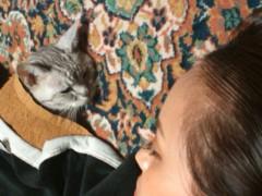 梓未來 公式ブログ/優しい猫 画像3