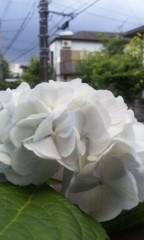 梓未來 公式ブログ/梅雨ならでは 画像1