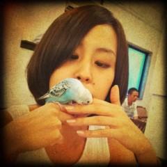 梓未來 公式ブログ/小鳥と友達 画像3