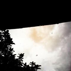 梓未來 公式ブログ/雨が 画像1