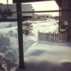 梓未來 公式ブログ/雪が白くて… 画像2
