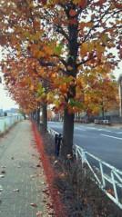里美 公式ブログ/(*^_^*) 画像2