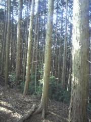 足立陸男 公式ブログ/ノープランの旅 画像2