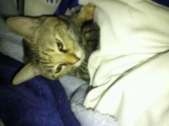 足立陸男 公式ブログ/寝起き 画像1