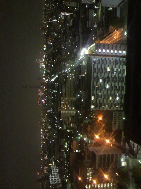 2010年11月13日ホテルからの夜景
