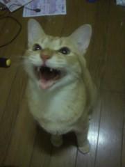 足立陸男 公式ブログ/ブログはじめます!! 画像1
