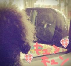 藤堂えり 公式ブログ/ナンバーワンコ 画像1