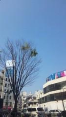 明日果 公式ブログ/晴天☆ 画像1