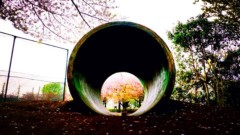 沖津賢一郎 プライベート画像/iPhone4Sで遊ぶ 穴の向こう