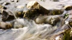 沖津賢一郎 プライベート画像 61〜80件/マイクロフォーサーズマスターへの道 これは川です。