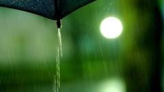 沖津賢一郎 プライベート画像 21〜40件/マイクロフォーサーズマスターへの道 傘の涙
