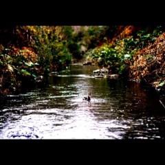 沖津賢一郎 プライベート画像 21〜40件/iPhone4Sで遊ぶ 東京ジャングル