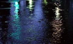 沖津賢一郎 プライベート画像 61〜80件/マイクロフォーサーズマスターへの道 水たまり