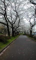 伊藤真弓 公式ブログ/☆チャット日(@'ω'@) 画像2