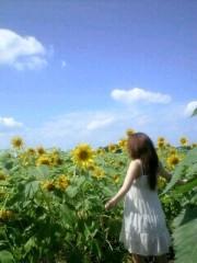 伊藤真弓 公式ブログ/ひまわりん(*´∇`) 画像1