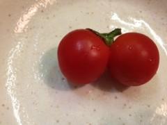 加藤利沙 公式ブログ/双子のトマト 画像1