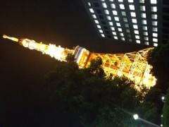 加藤利沙 公式ブログ/東京タワー(≧∇≦) 画像1