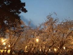加藤利沙 公式ブログ/お花見 画像1