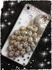 SAKI 公式ブログ/私の携帯電話 画像1