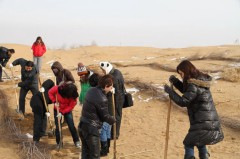 泉忠司 公式ブログ/砂漠に森を!〜中国滞在記4日目〜 画像2