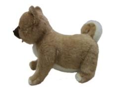 泉忠司 公式ブログ/あのイヌがついに 画像2