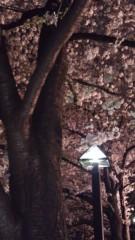 植田誠(うえはまだ) 公式ブログ/『シルバー。』 画像1